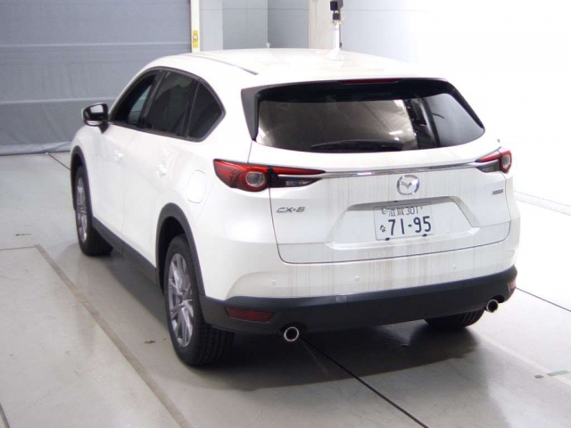 Mazda CX-8 2017 год, объем 2.2 л, 190 л.с.